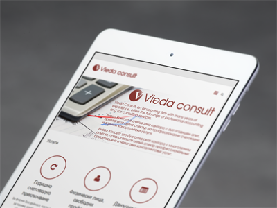Vieda Consult – Full Range of Professional Accounting and Tax Consulting Services